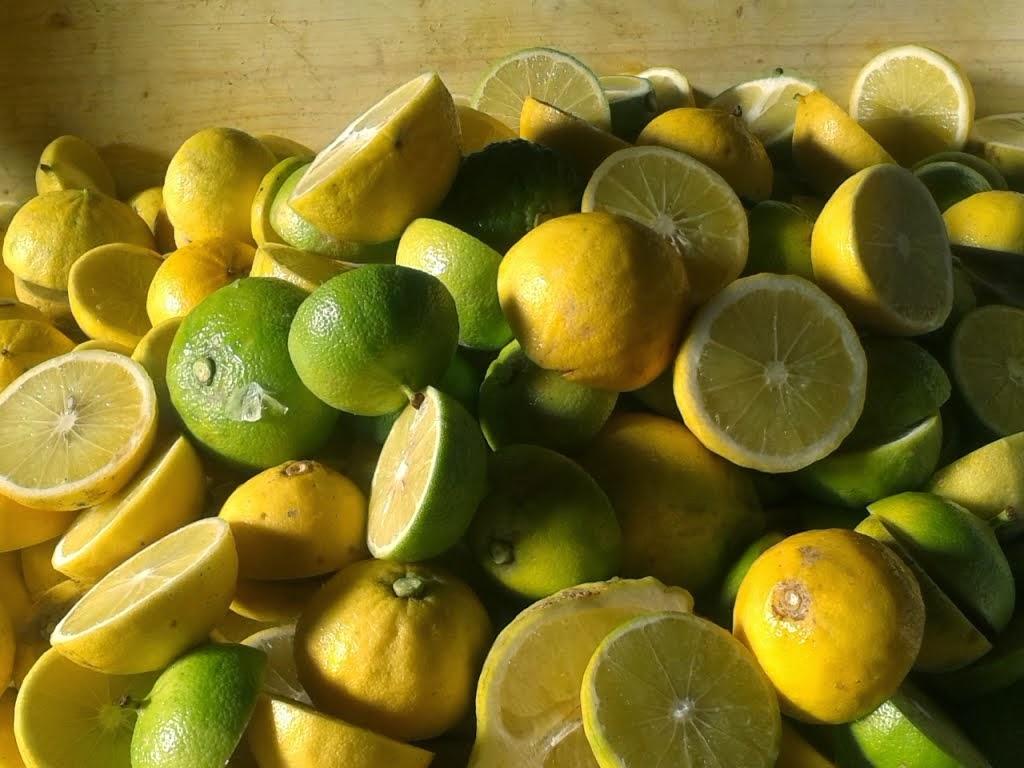olio essenziale bergamotto gr
